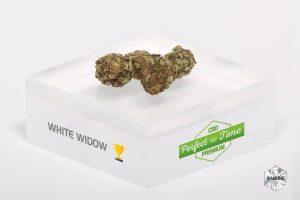 le white widow et son utilité
