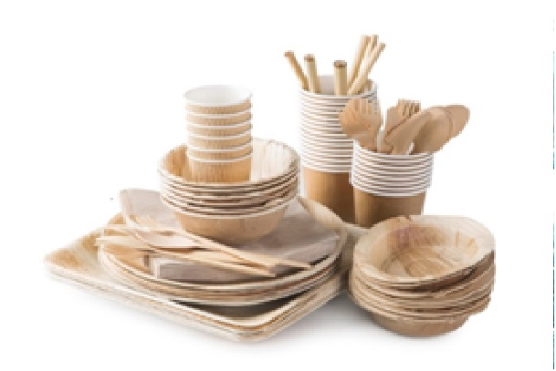 Choisir des solutions écologiques pour sa vaisselle