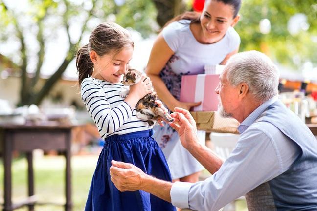 Quel chat offrir à une fillette ?